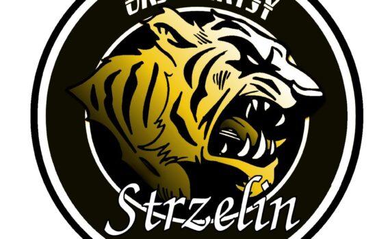 Gollwitzer Polska została oficjalnym sponsorem zespołu Tygrysy Strzelin